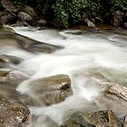 Mountain Stream by doorfrontphotos