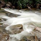 Mountain Stream by doorfrontphotos