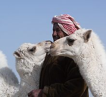 Shepherd and Camels by Michael Stubbs