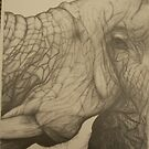 Big 5: Elephant by Stephanie Nienaber