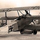 Fokker DrI by Kofoed