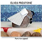 Elvis Prestone by rockbottom