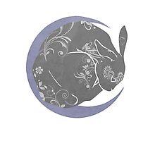 Moon Bunny Photographic Print