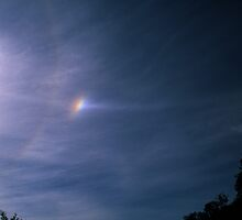 Sundog, Parhelic Circle and Solar Halo. by Ern Mainka