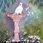 My friendly Cockatoo comes for a drink by Faye Doherty