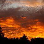 Dinsdale Sundown by avionz