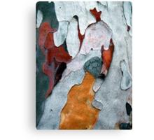 Paper Bark #1 Canvas Print