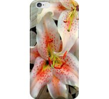A Balancing Act iPhone Case/Skin