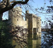 Bodiam Castle by Andy Coleman