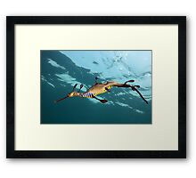 Weary Weedy Framed Print