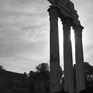 Monochromed Columns by CiaoBella