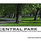 central [park by Venom22