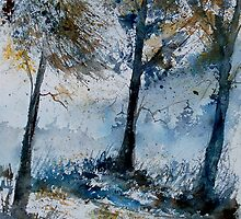 WATERCOLOR 080108 by calimero
