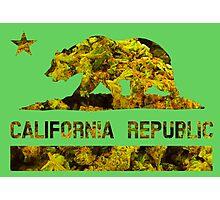 Cali Republic of Dank  Photographic Print