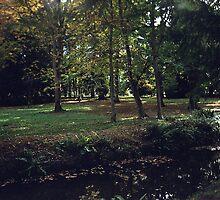 Thorpe Perrow in Autumn by hilarydougill