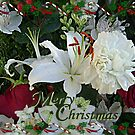 Merry Christmas Lily Card by Jane Neill-Hancock
