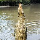 Jumping Croc 1 by Candice84