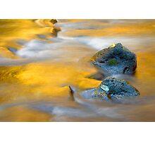 Golden Refuge Photographic Print