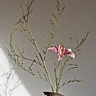 Ikebana-043 by Baiko