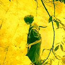 A Walk in the Sun by © Joe  Beasley IPA