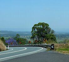 Peachester Range Qld Australia by Sandra  Sengstock-Miller