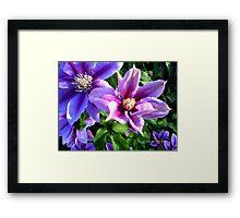 Simplistic Purple Framed Print
