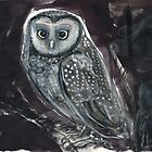 Spotted Owl Products by WoolleyWorld