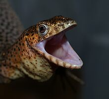 Angry Rusty Monitor by Steve Bullock
