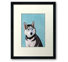 Mr Siberian Husky Framed Print