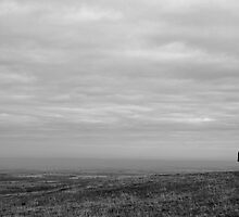 Landmark by Dave Pearson