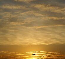 Sunset Chopper by Daniel Barnett