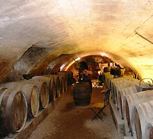 Wine Cellar, Loire Valley, France by summer