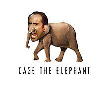 Nicolas Cage The Elephant Photographic Print