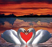 Valentine sunset swans by CanDuCreations