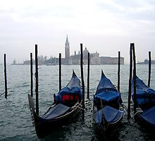 gondolas by david stevenson