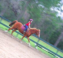 Horsepower!!!! by AngelPhotozzz