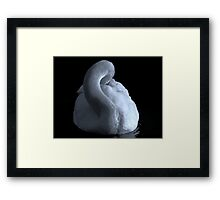 The Swan (In b&w) Framed Print