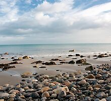 Shankill Beach by curiouscat