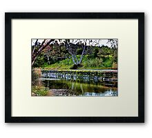 """""""Reflections Along  The Way"""" Framed Print"""