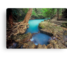 nature's private spa pool...Nth Qld Canvas Print