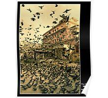 The Birds -uncut Poster