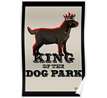 Labrador Retriever King of the Dog Park Poster