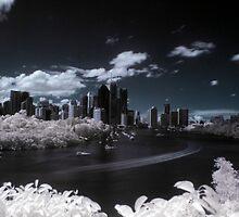 Leafy City 2 by Matthew Stewart