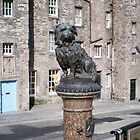 Grey Friars Bobby - Edinburgh by anaisnais
