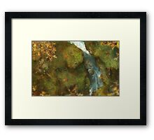 Automnal exploration Framed Print
