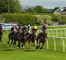 Racing at Kelso, Scotlands friendliest racecourse.... by Ken McKillop