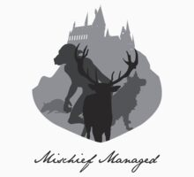 The Marauders Grayscale by thegadzooks