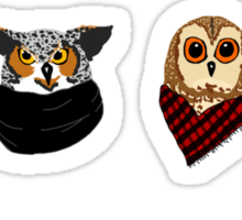Owl Snuggled Up  Sticker