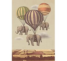 Flight of The Elephants  Photographic Print