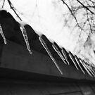 (c) by Winter by Zeanana